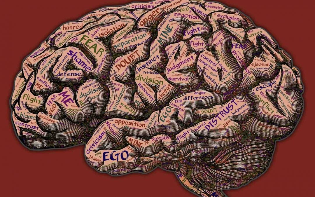 Formar mentes críticas